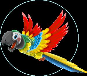 QC Parrot Head